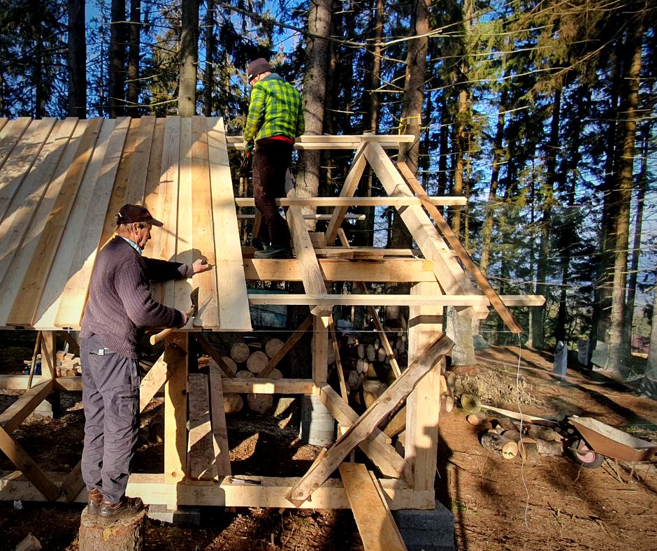 budowa w lesie